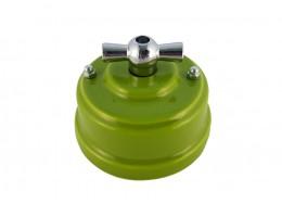 Выключатель фарфоровый поворотный двухклавишный, цвет pistacchio (фисташковый), ручка серебро