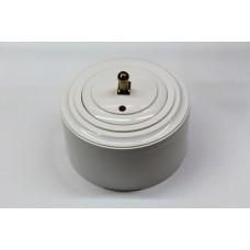 Пластиковый выключатель однорычажковый с индикатором (белый механизм, белая рамка, белый стакан, рычаг золото)