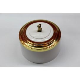 Пластиковый выключатель однорычажковый с индикатором (белый механизм, золотая рамка, белый стакан, рычаг золото)