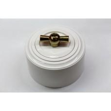 Пластиковый поворотный выключатель одноклавишный (белый механизм, белая рамка, белый стакан, рычаг золото)