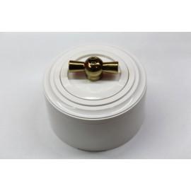 Пластиковый поворотный выключатель двухклавишный (белый механизм, белая рамка, белый стакан, рычаг золото)