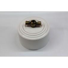 Пластиковый поворотный выключатель двухклавишный (белый механизм, белая рамка, белый стакан, рычаг бронза)