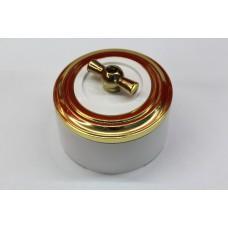 Пластиковый поворотный выключатель одноклавишный (белый механизм, золотая рамка, белый стакан, рычаг золото)